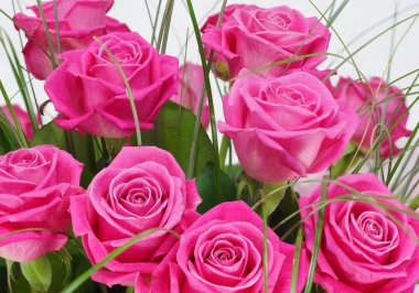 Bouquet of roses in pink package