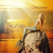 krásná mořská víla sedící na skále