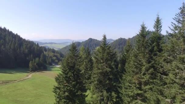 Horská landcsape na letní čas v jižně od Polska. Pohled shora.