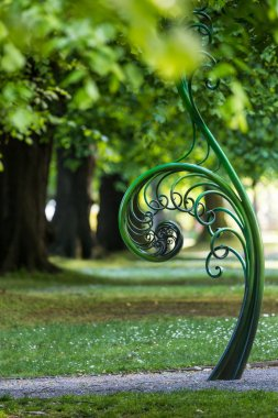 Unravelling fern, one of New Zealand symbols.