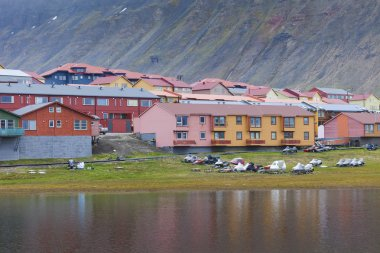 Idyllic scenic view, colorful houses and green field with arctic