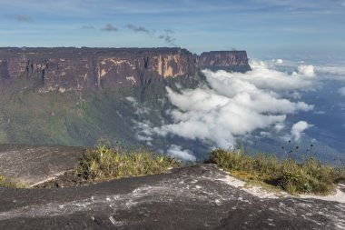 View from the Roraima tepui on Kukenan tepui at the mist - Venez
