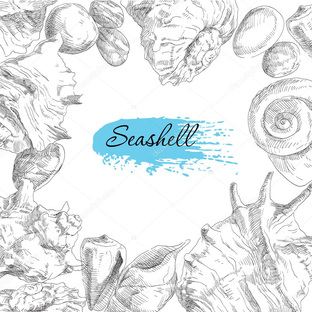 Seashells frame background
