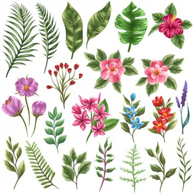 "Картина, постер, плакат, фотообои ""коллекция цветов и листьев "", артикул 65202209"