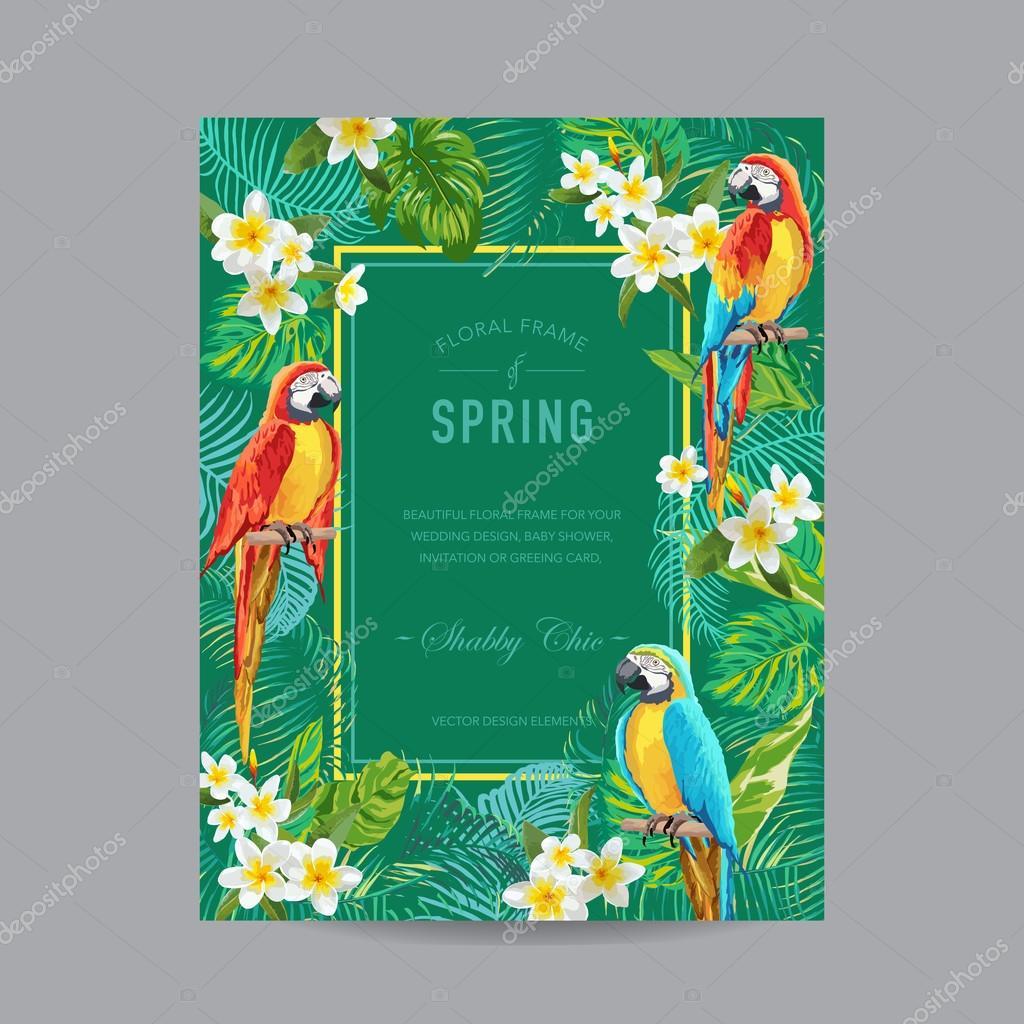 Tropische Vögel und Blumen bunte Rahmen - für Einladung, Hochzeit ...