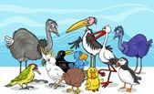 ptáků skupině kreslený obrázek
