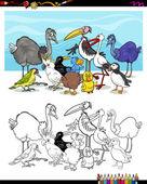 kreslený ptáků pro barvení