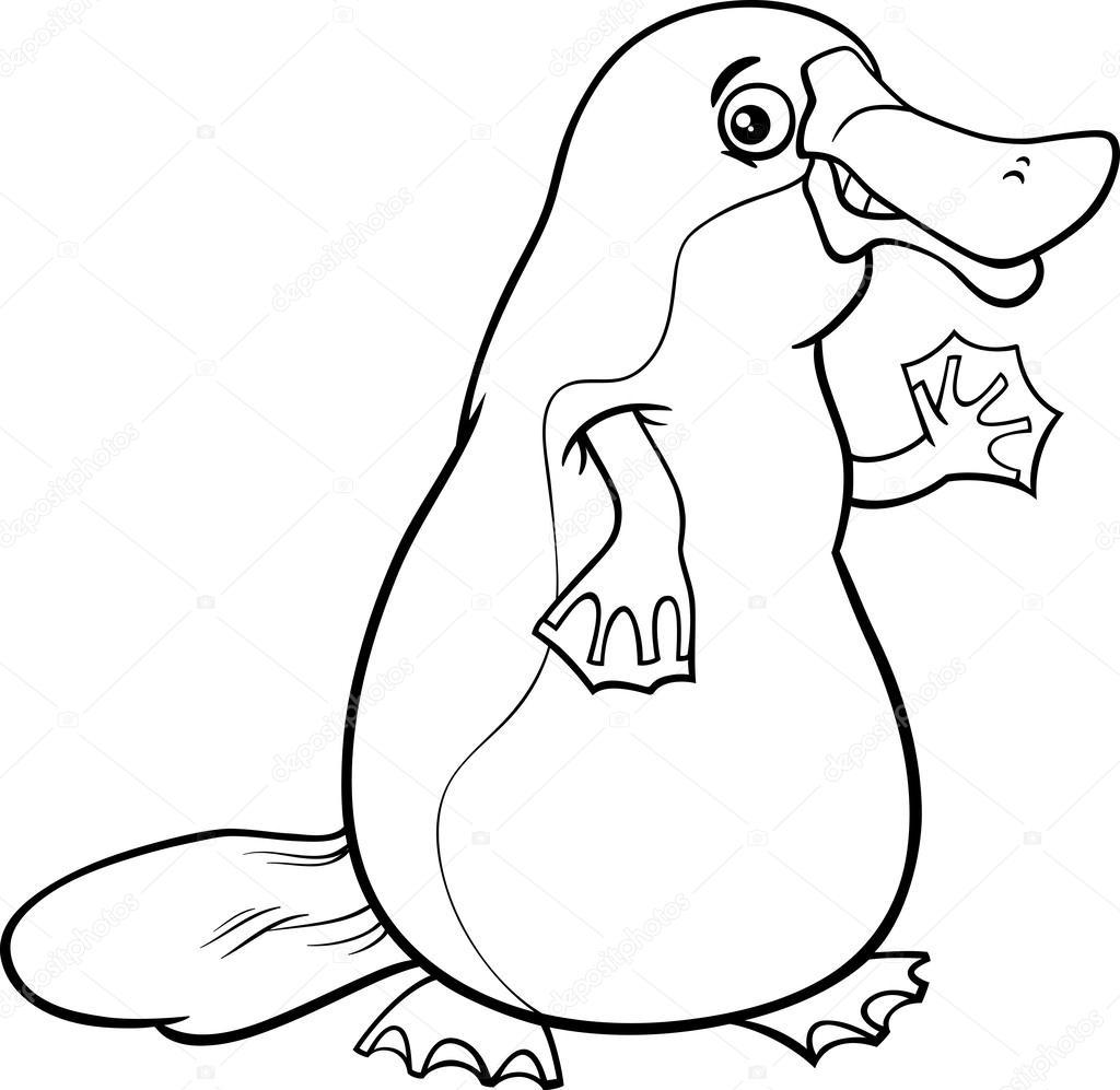 Página de ornitorrincos animales dibujos animados para colorear ...