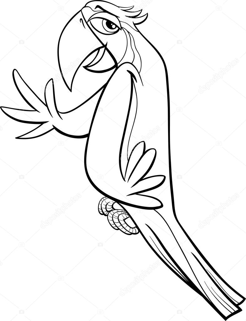 Amerika Papağanı Papağan Boyama Sayfası Stok Vektör Izakowski