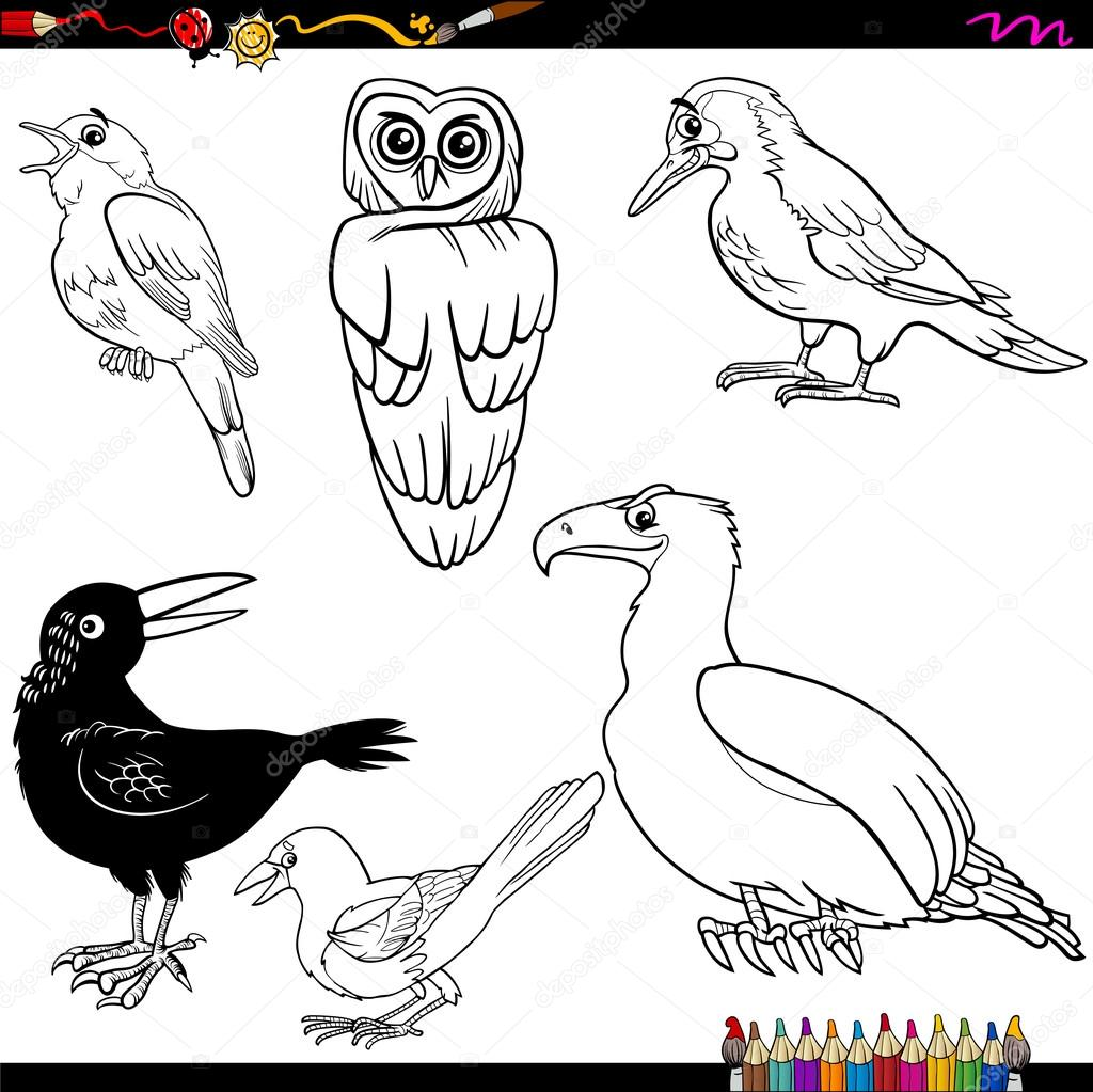 Página de aves de dibujos animados para colorear — Archivo Imágenes ...