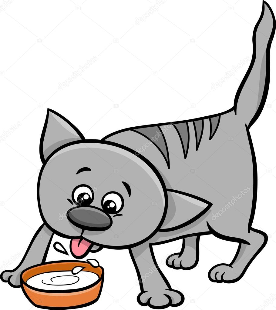 signs of mange in cats