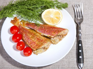 grilled Mediterranean red mullet fish