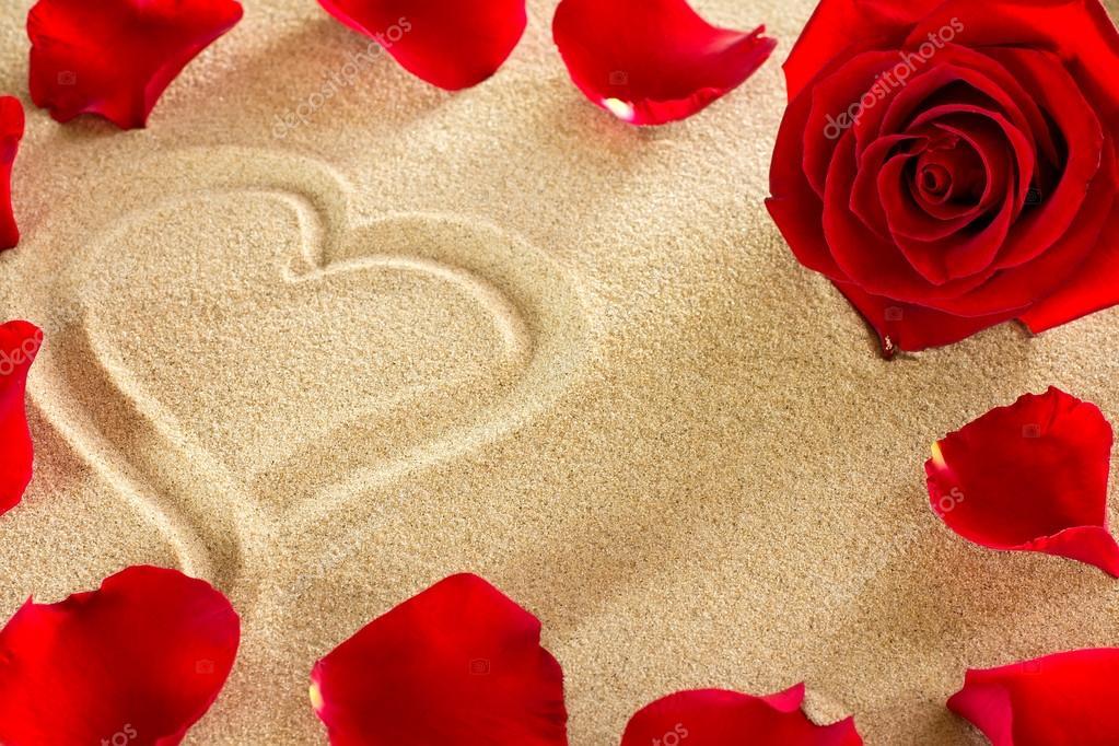 Marco de la playa. En la arena en el corazón y los pétalos de rosa ...