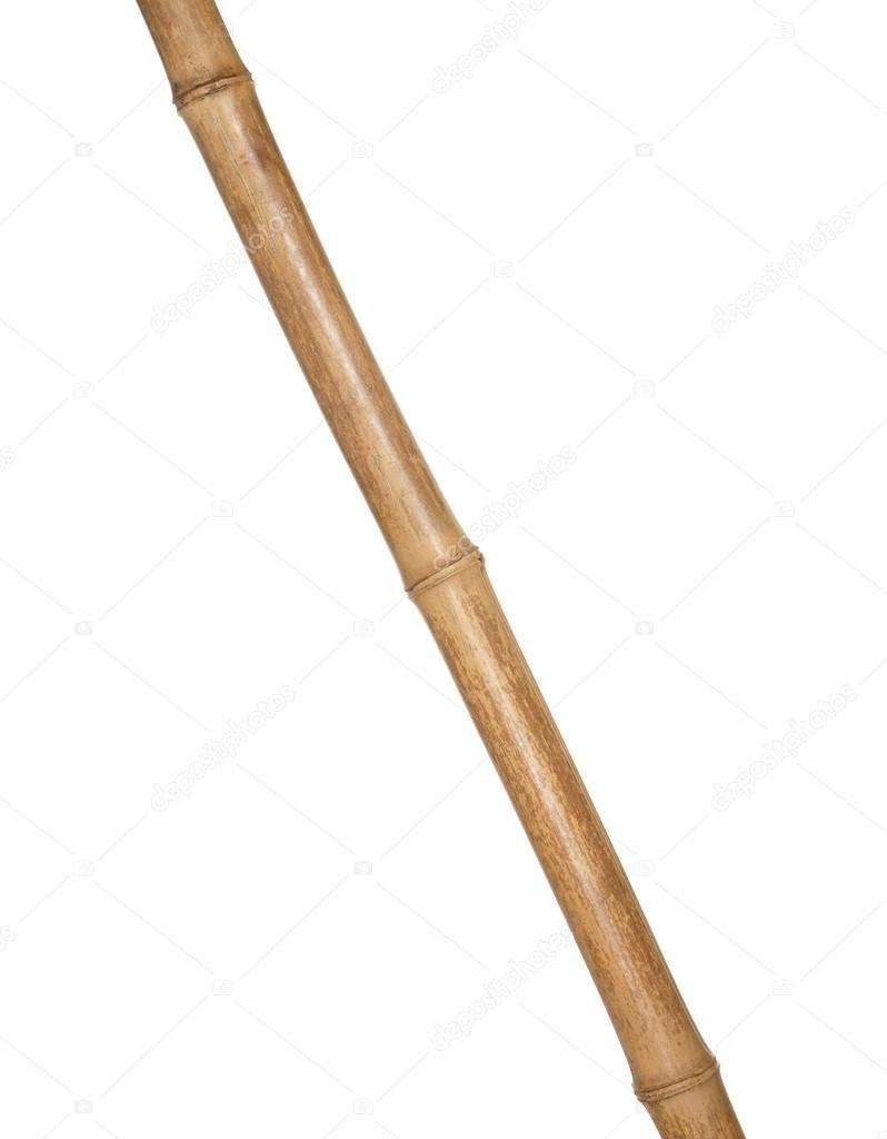 Parte Del Tronco De Bambu Secos Aislado Sobre Fondo Blanco Fotos - Bambu-seco
