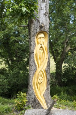 bearded man tree engraving