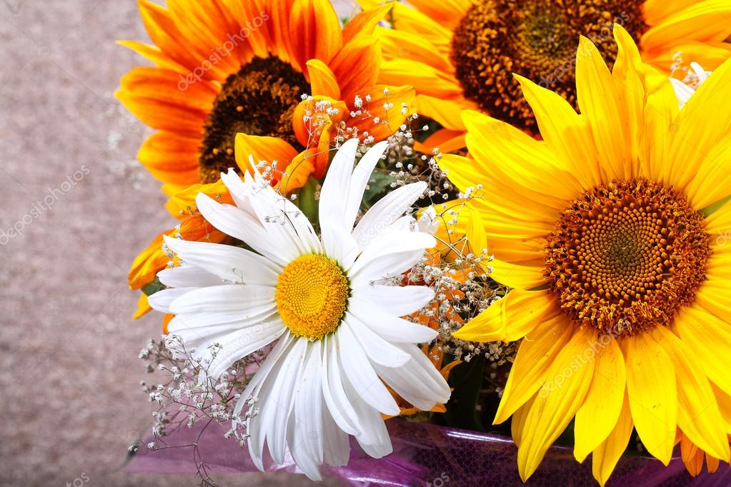 Gelbe und weiße Blumen — Stockfoto © PhotoWorld #78171378