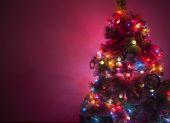 krásný vánoční strom na tmavém pozadí