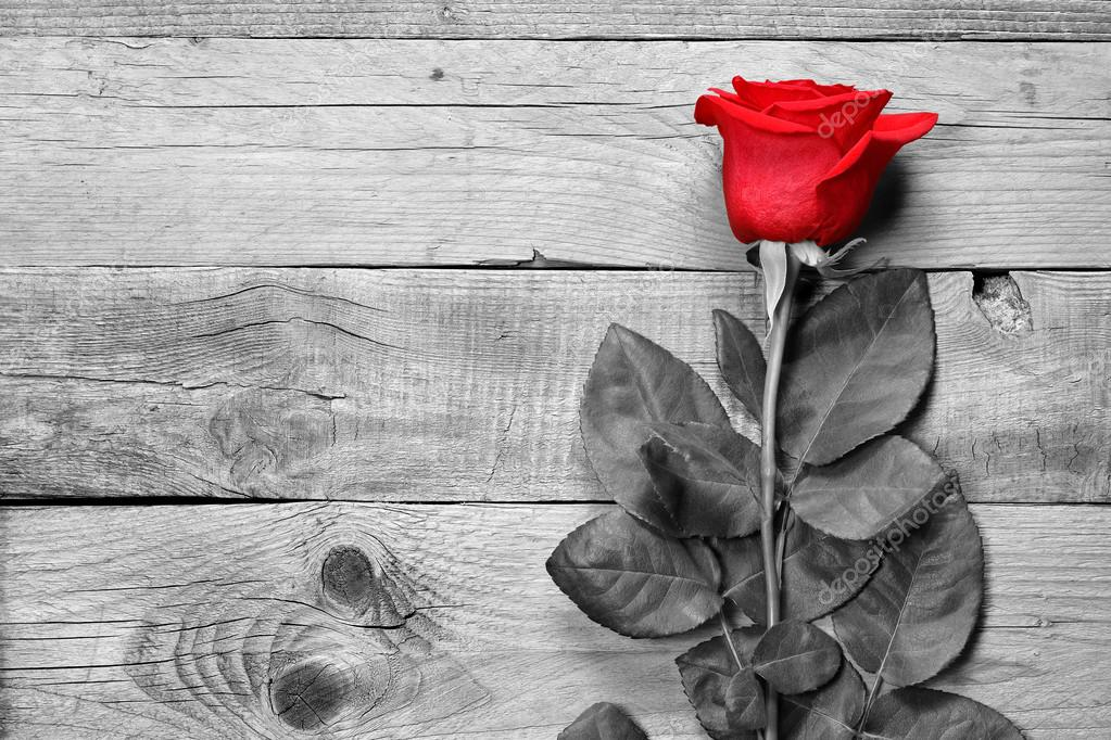 rote rose auf schwarz wei aus holz hintergrund stockfoto windujedi 89953858. Black Bedroom Furniture Sets. Home Design Ideas