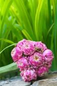 schöner Strauß von Lotusblüten