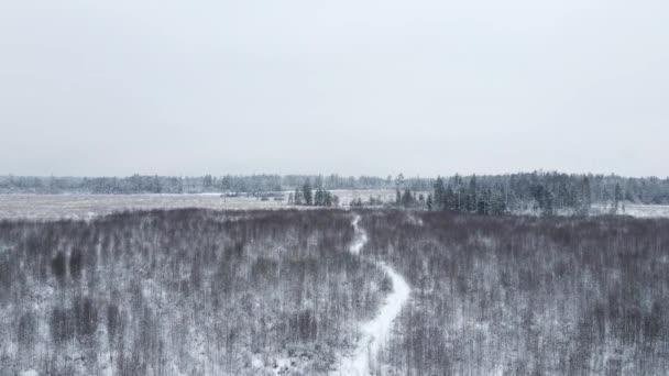 zimní zasněžené pole s lesem a pěšinou letící na dronu nad zemí