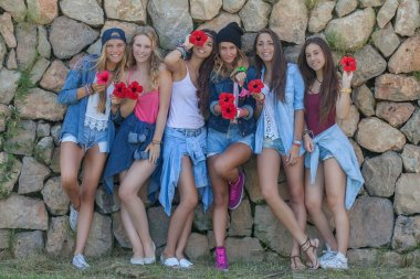 Happy fashion denim teens happy group stock vector