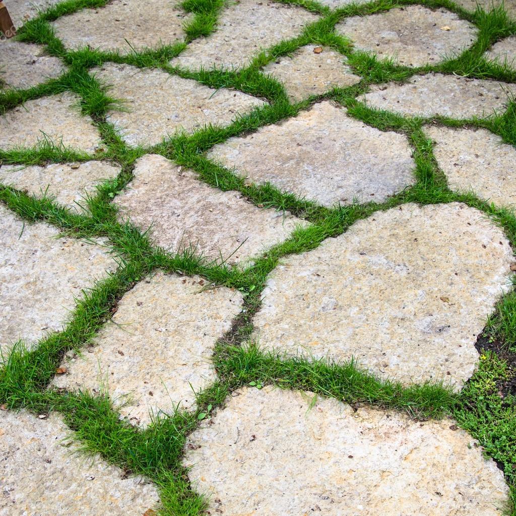 Pista De Las Losas De Piedra Caliza En El Jardin Fotos De Stock - Piedra-jardin