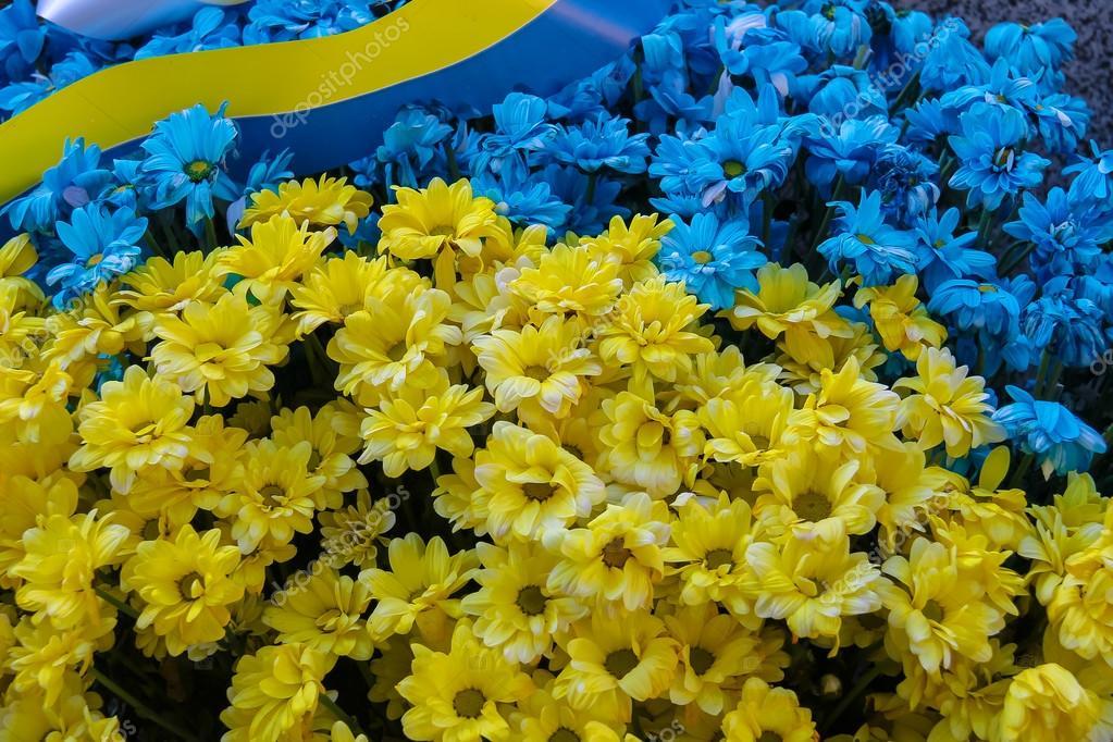 Blue And Yellow Infinity Symbol Stock Photo Valdum 141885174