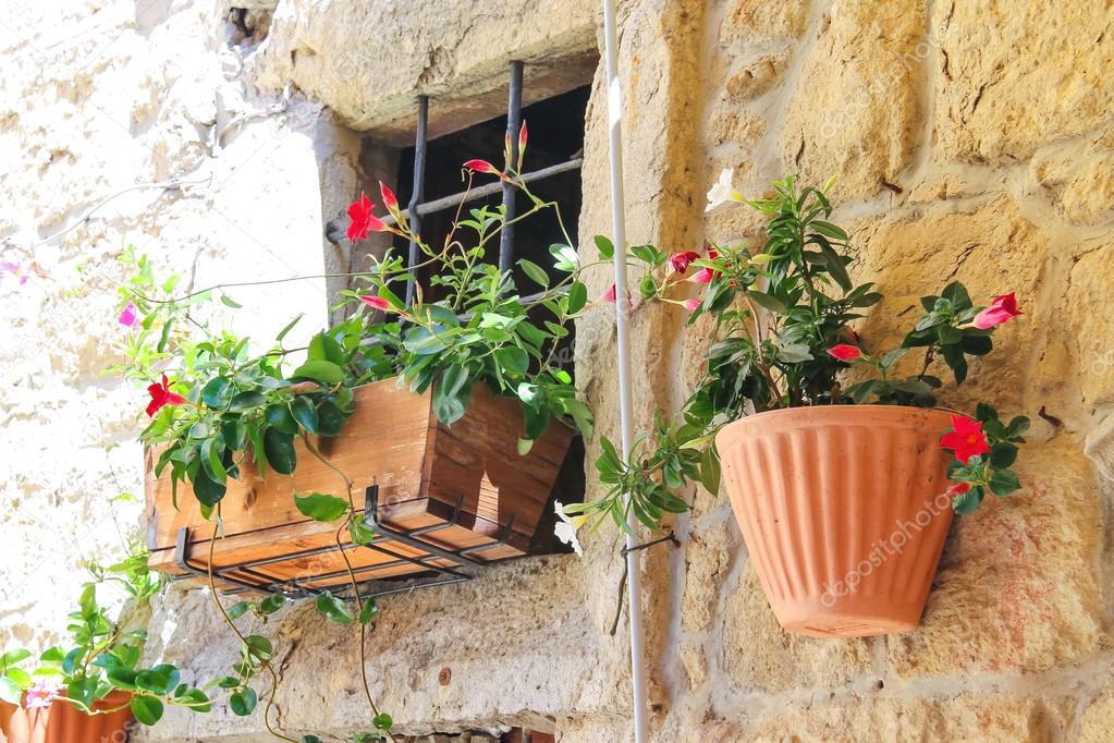 Maceta de flores que adornan las paredes de la casa foto - La casa de la maceta ...