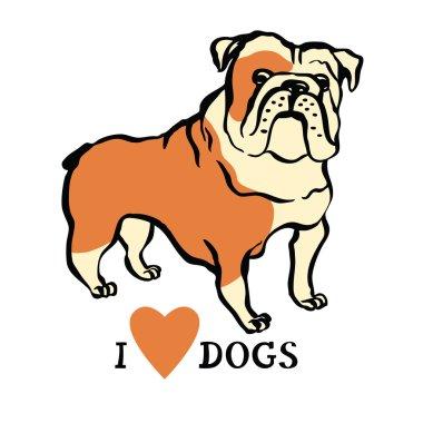 ✅ bulldog face premium vector download for commercial use. format: eps,  cdr, ai, svg vector illustration graphic art design