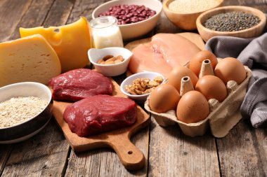 Protein sources products, collection of  food stock vector