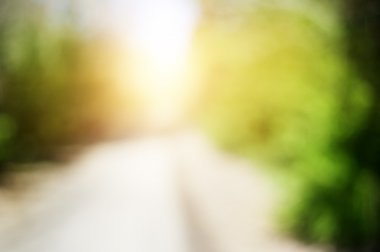 Abstract blurred nature background with sunlight