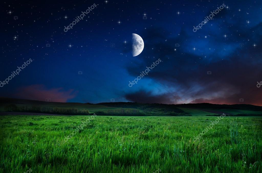 Beautiful night field background