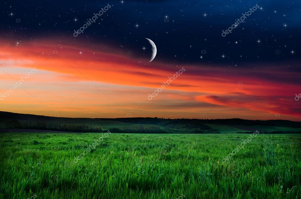 Night sky and field background