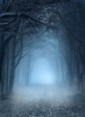 Road in the blue foggy forest stock vector