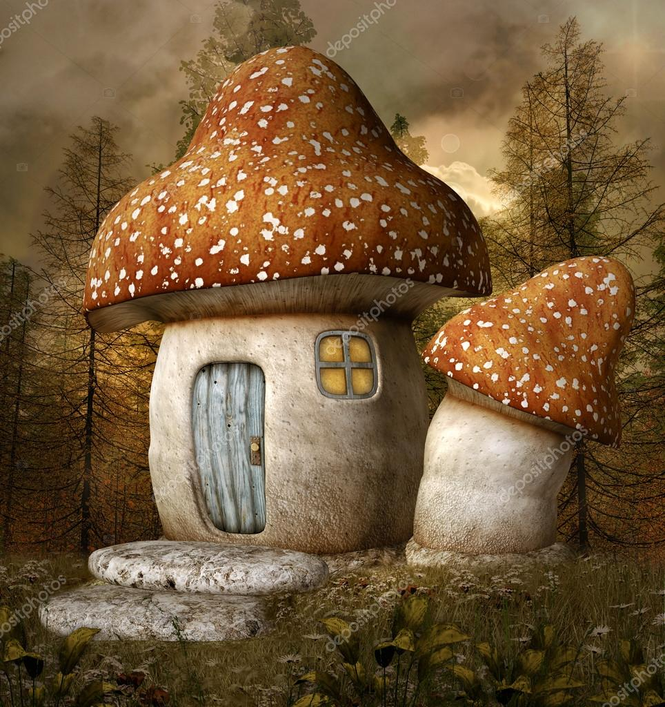 Mushroom house in forest