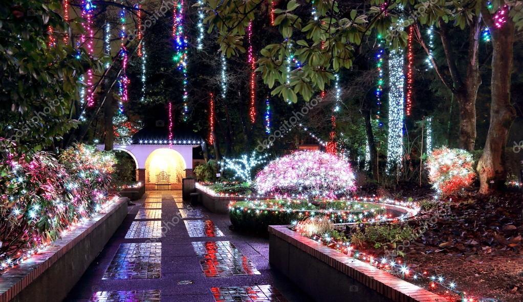 Christmas Illumination In The Park