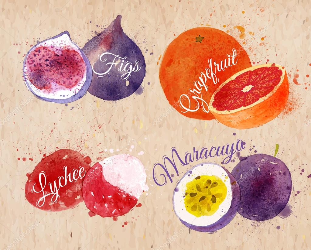 Fruit watercolor figs, grapefruit, lychee, maracuya kraft