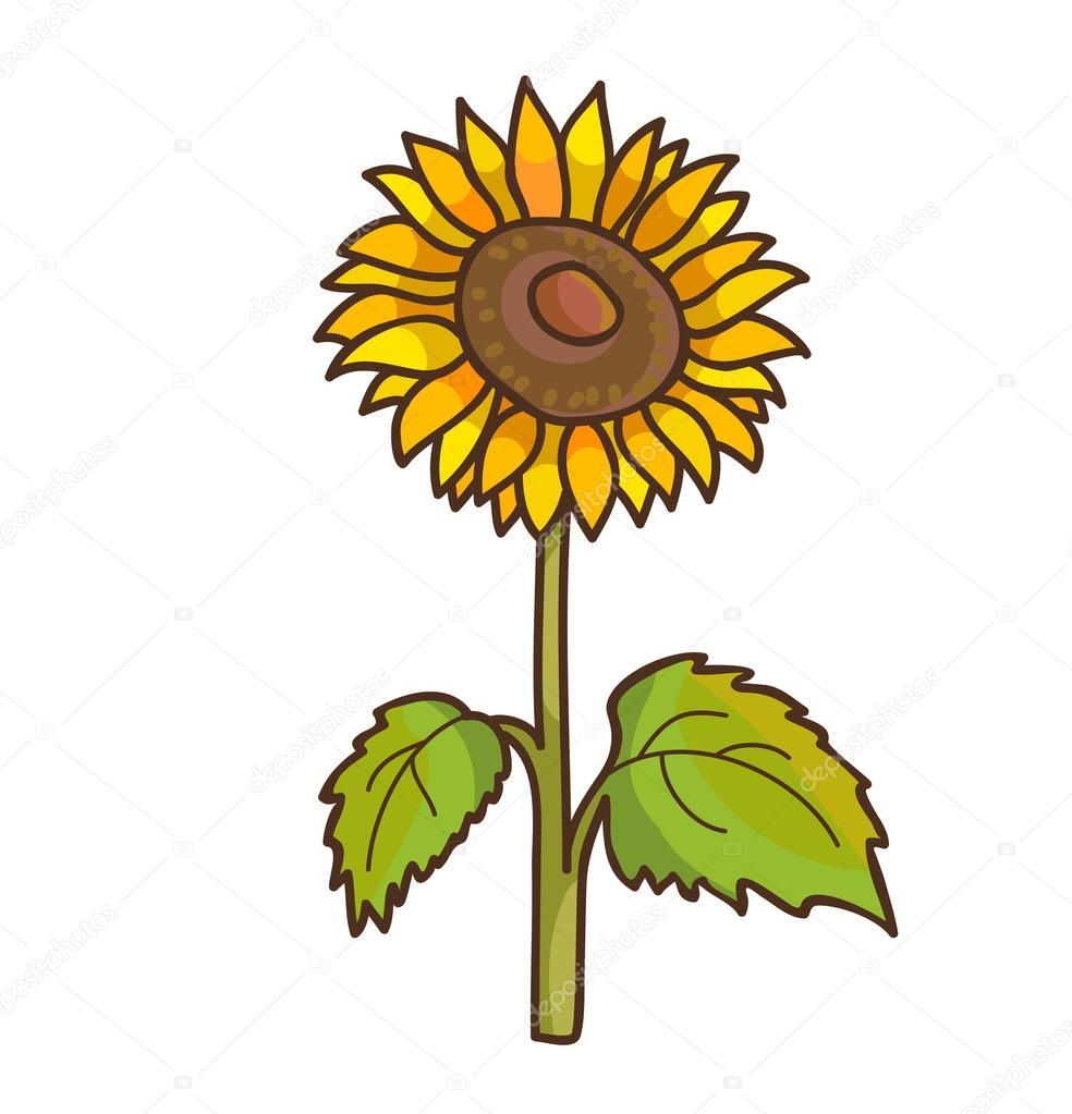beautiful cartoon sunflower stock vector sonulkaster 119667112 rh depositphotos com cartoon sunflower images cartoon sunflower template