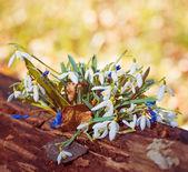 Erdei virágok csokor