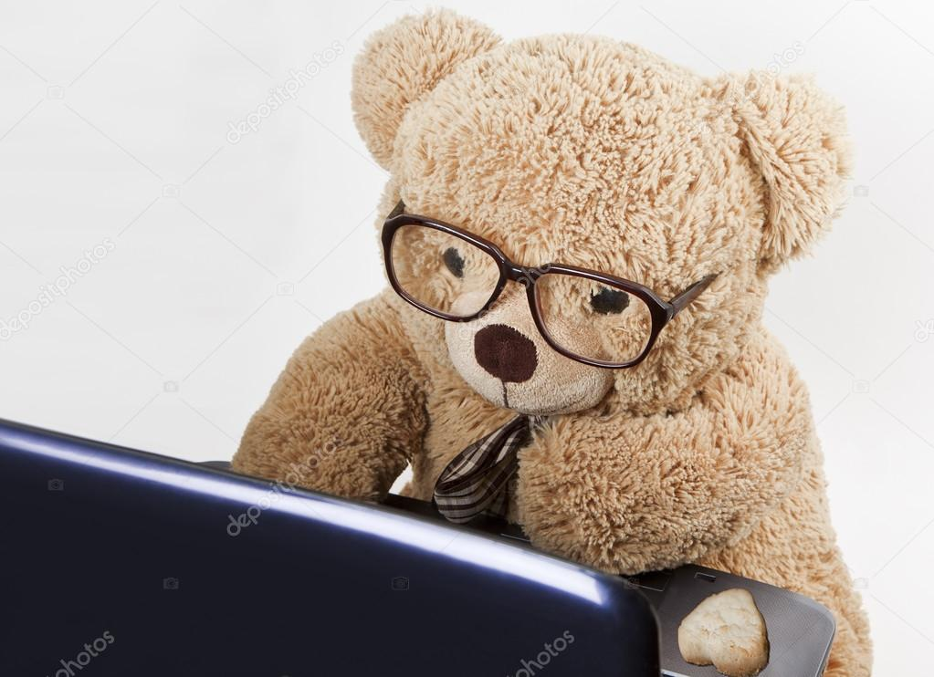 Teddy bear in glasses works behind a computer — Stock ...