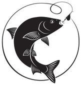 Fotografie Tloušť ryba silueta