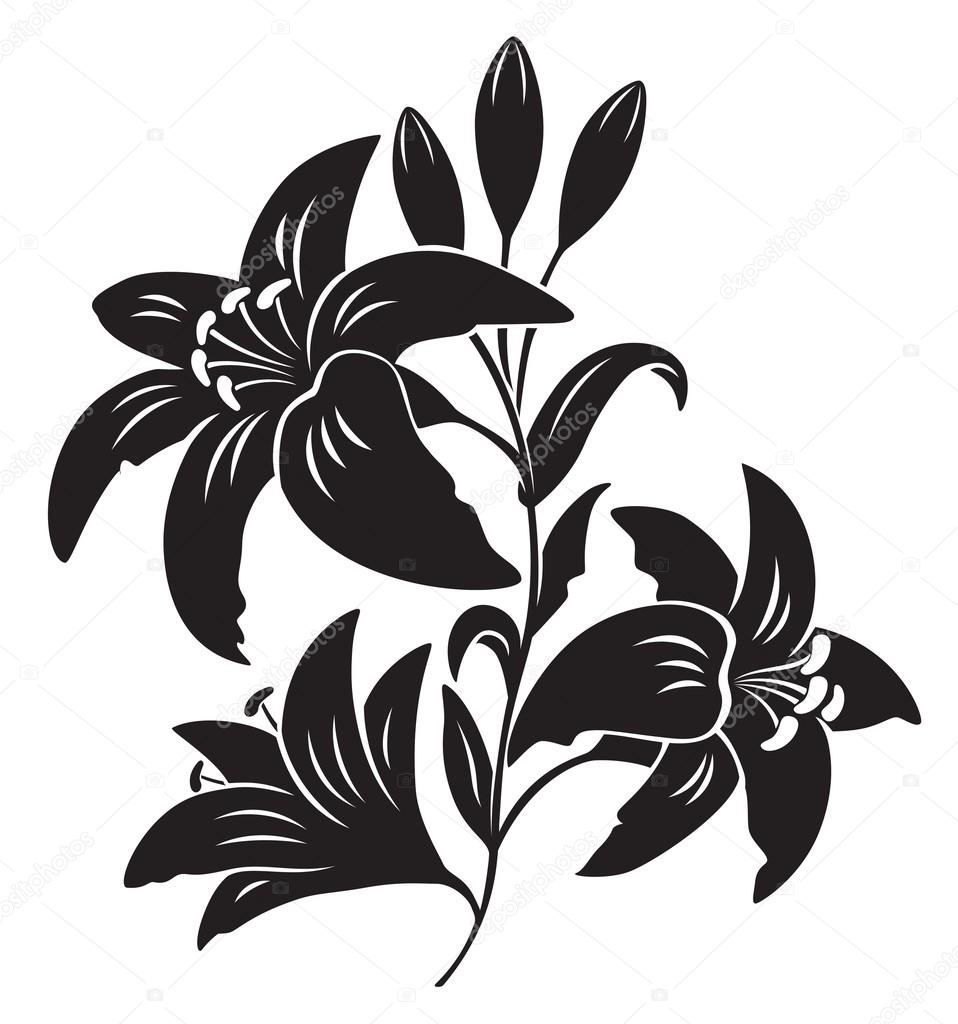 Silhouette of lily flower — Stock Vector © kvasay #61884839