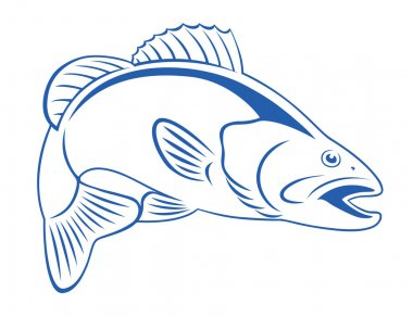 retro style drawing Fish bass