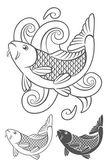 Photo koi carp fish