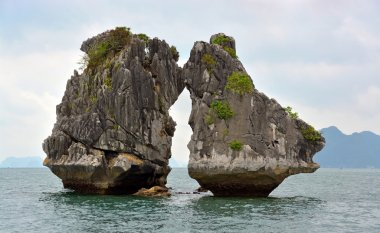 Two Cocks Fighting Rocks in Halong Bay