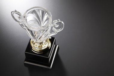 Beautiful crystal trophy