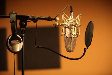 Professional microphone in the recording