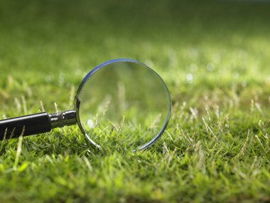 Close up of the magnifying glass on the grass stock vector