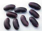 dunkle Nierenbohnen