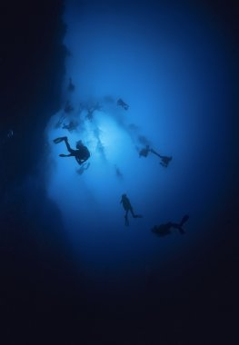 deep dive in the Belize Blue Hole